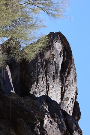 0338 (sideways on purpose) Mormon Trail, AZ hike