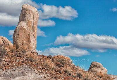 Rocks_Petrified_AZ_9593cf IndSum