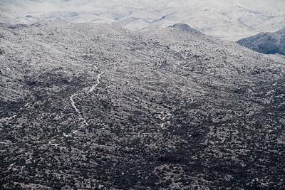 Snow Covered Deset Landscape