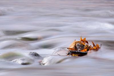 Arizona Travel Photography - Oak Creek