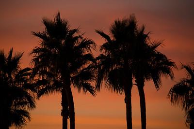 Arizona Travel Photography- Phoenix Sunset