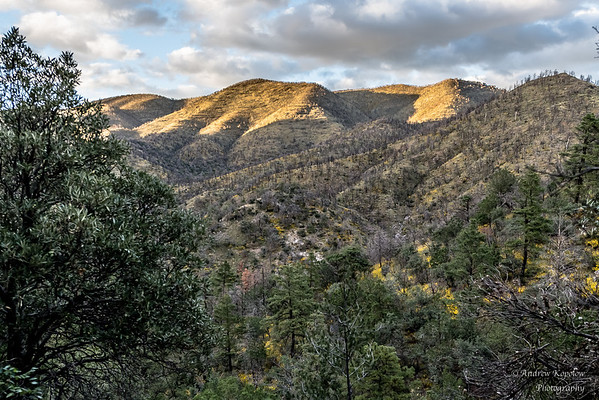 Arizona's Majestic Peaks and Valleys
