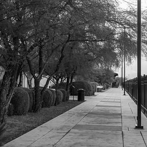 20180711-CCT-Tucson_DT-5299