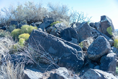 20181127-Petroglyphs-Tularosa-619601
