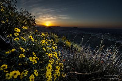 Dawn, Piestewa Peak