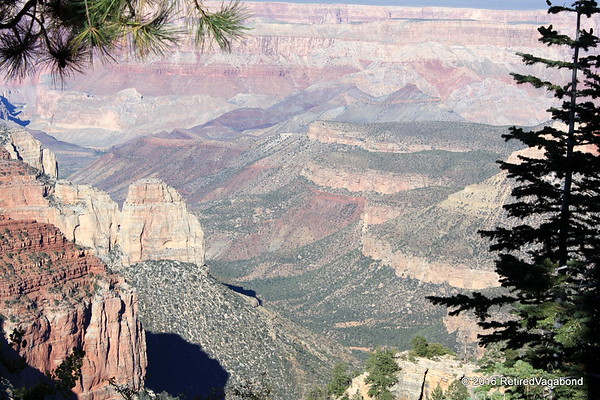The Grand Canyon - From North Rim