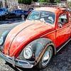 Rust bug