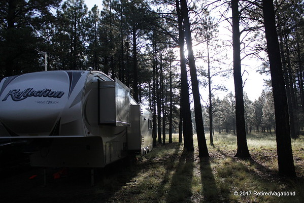 Our Camp in the Forest Near Flagstaff, Az