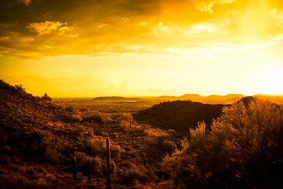 Desert Sunset Landscape in Warm tones