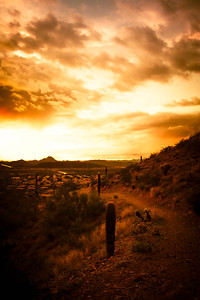 Desert Hiking Trail at Sunset