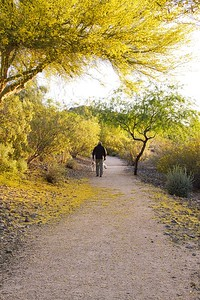 Man on Desert Trail with Dog