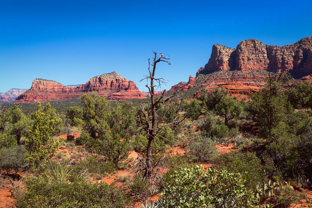 Sedona Desert View