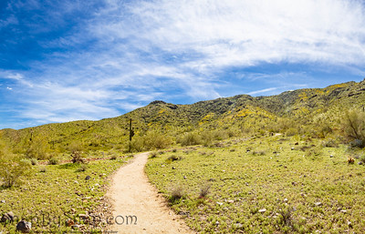 Hiking Trail to Blue Skies