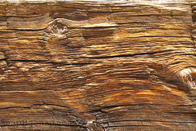 Highly detail rustic wood plank