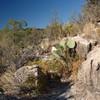 Walnut Canyon <br /> Oct 10 2005 - NSXPO 2005 Return trip