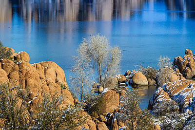 A tree between the rocks at Watson Lake with blue water