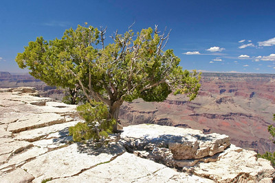 "Maricopa Point, Grand Canyon.  We placed a ""Pop Rock"" here."