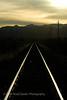 Sunlight reflecting on rails of tracks in desert.