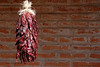Chili Peppers hanging with brick wall as background in Tubac, Arizona.