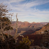 South Rim at The Grand Canyon