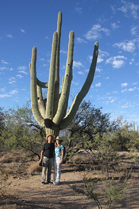 Saguaro National Park - Saguaros have a relatively long life span. They may grow their first side arm anywhere from 50 to 75 years of age.  Some specimens may live for more than 200 years.