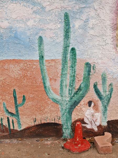Arizona - Wall art - Cottonwood