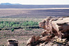 Petrified Forest National Park, Arizona.<br /> June 22, 2004