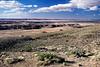 Painted Desert National Park, Arizona.<br /> June 22, 2004
