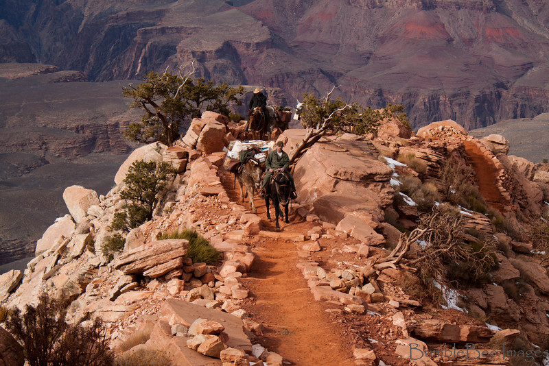 South Kaibab Trail - South Rim at The Grand Canyon