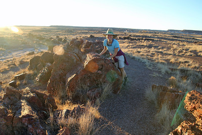 Petrified Forest National Park - Petrified wood is classified as a semi-precious stone and this large log Melanie is touching is worth millions of dollars!