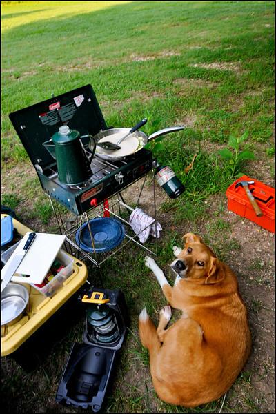Arkansas Camping-105