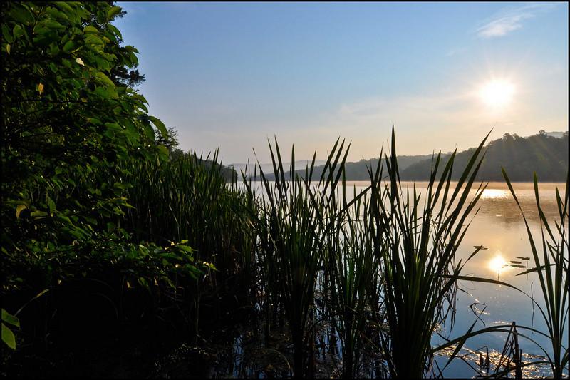 Lake Leatherwood - Arkansas - May 2009