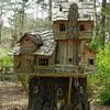 Garvan Woodland Gardens, near Hot Springs, AR. Fairie house.