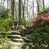 Garvan Woodland Gardens, near Hot Springs, AR