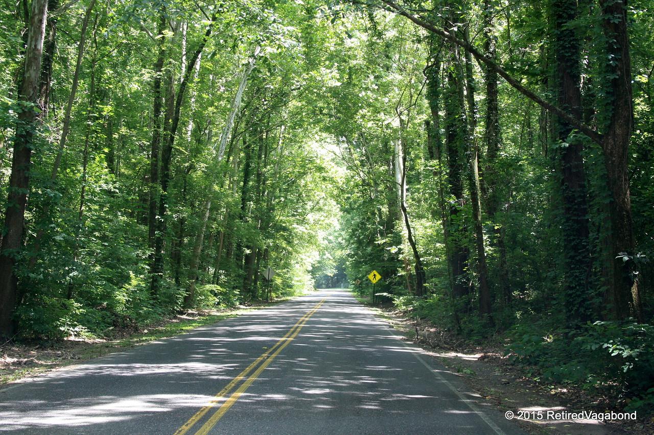 Hot Spring National Park Senic Drive