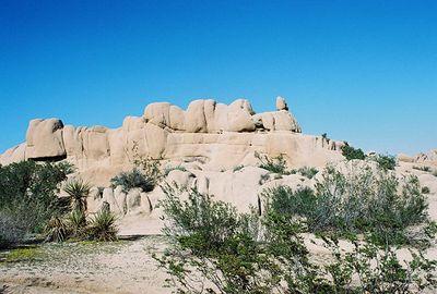 9/20/03 Jumbo Rocks, Campsite#6B, Joshua Tree National Park, San Bernardino County, CA