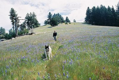 4/30/05 Hana & Gil on Lupine-covered hills between Lookout & Cumbre Roads. Figueroa Mountain Recreation Area, Los Padres National Forest, Santa Barbara County, CA