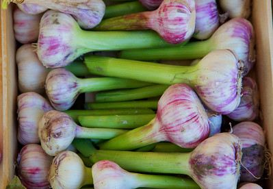 Arler Market Shallots:  purple, white and brilliant green