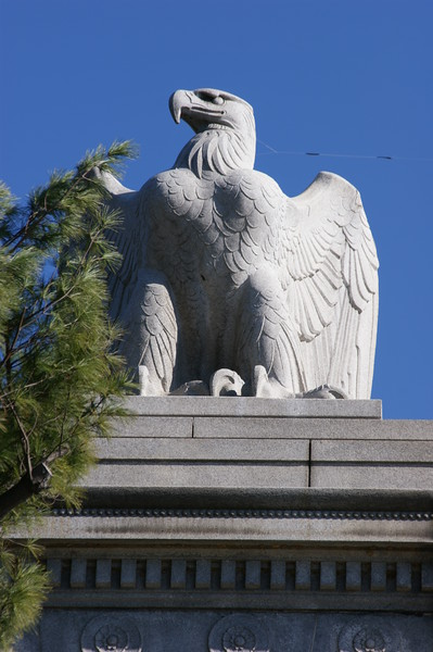 Eagle on Bridge, Washington, DC