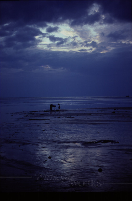Mother and daughter on sandbar at dusk, finding shellfish
