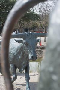Dallas031814-0105
