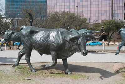 Dallas031814-0096