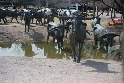 Dallas031814-0106