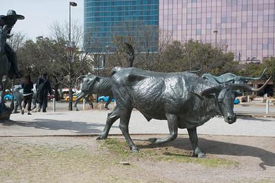 Dallas031814-0097