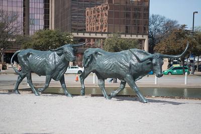 Dallas031814-0099