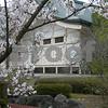 The Sakura, Cherry Blossoms, were in bloom when visiting this shrine near Nagasaki, Japan.