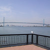 "Gull in front of the <a href=""http://www.ambassadorbridge.com/"">Ambassador Bridge</a>, connecting Detroit with Windsor, which I had crossed over the previous evening."