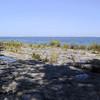 Alvar on Kelley's Island.