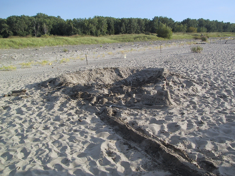 """At <a href=""""http://www.dnr.state.oh.us/PARKS/parks/headlnds.htm"""">Headlands Beach State Park</a>, someone had built a very extensive sand castle."""