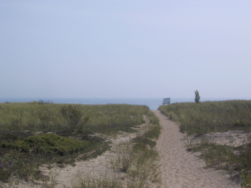 Dunes in Illinois Beach State Park, with Lake Michigan just beyond.
